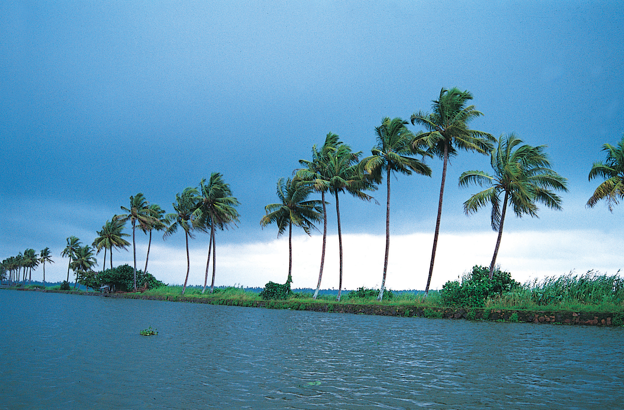 BACKWATER VEMBANADU